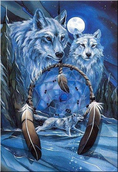 dreamcatcher native wolf spirit wallpaper - photo #19